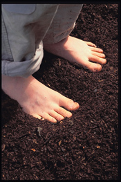 our Barefoot Soil